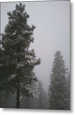 Winter Metal Print by Heather L Wright