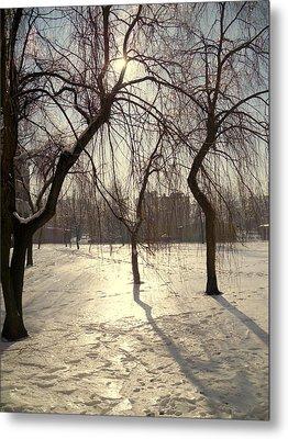 Willows In Winter Metal Print by Henryk Gorecki