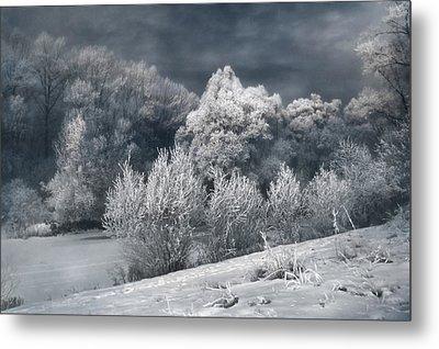 Winter - IIi Metal Print by Akos Kozari
