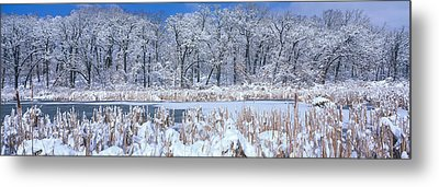 Winter, Illinois, Usa Metal Print by Panoramic Images