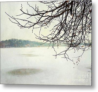 Winter Impressions IIb Metal Print