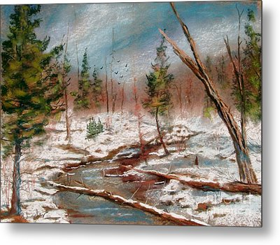 Winter In Canane Metal Print by Bruce Schrader