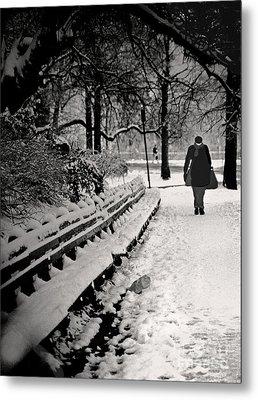 Winter In Central Park Metal Print by Madeline Ellis
