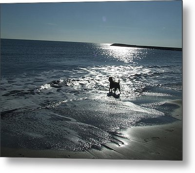 winter in Les Ste Marie de la mer Metal Print