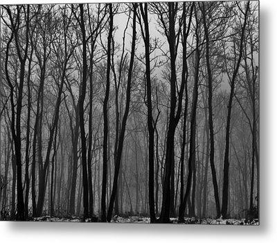 Winter In Pennsylvania Metal Print by Benjamin Yeager