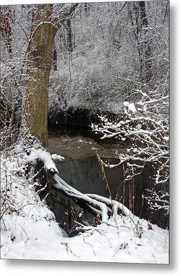 Winter In Rotary Park 2 Metal Print