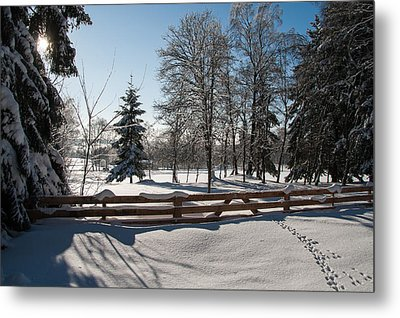 winter in the Harz area Metal Print by Andreas Levi