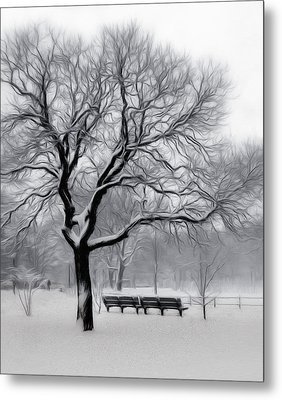 Winter In The Park Metal Print by Nina Bradica