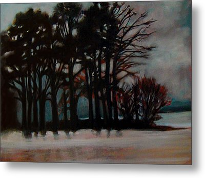 Winter Metal Print by Irena Mohr