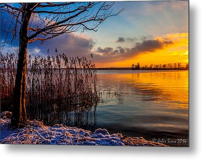 Winter Lake Sunset With A Tree Lighted In Red And Orange  Metal Print