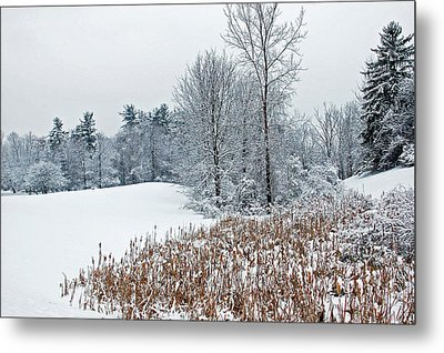Winter Landscape Metal Print by Aimee L Maher Photography and Art Visit ALMGallerydotcom