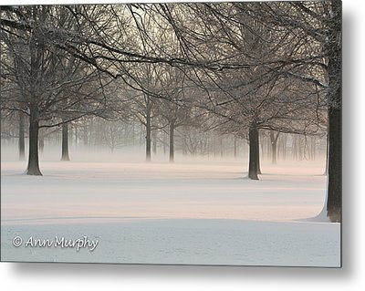 Metal Print featuring the photograph Winter Landscape by Ann Murphy
