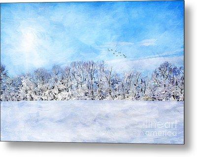Winter Landscape Metal Print by Darren Fisher
