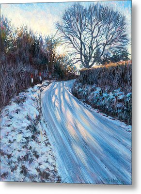 Winter Light Metal Print by Tilly Willis