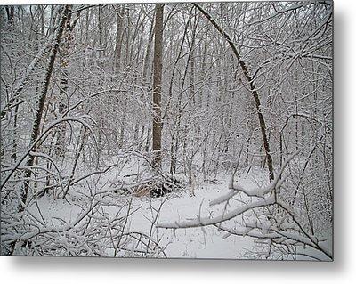 Winter Magic Mystic Metal Print by Betsy Knapp
