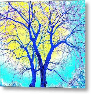 Winter Marriage Of Two Trees Metal Print by Ann Johndro-Collins