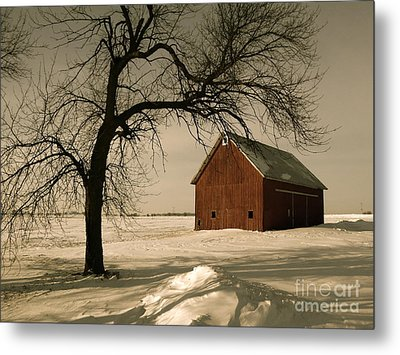 Winter Memory Metal Print by Tim Good