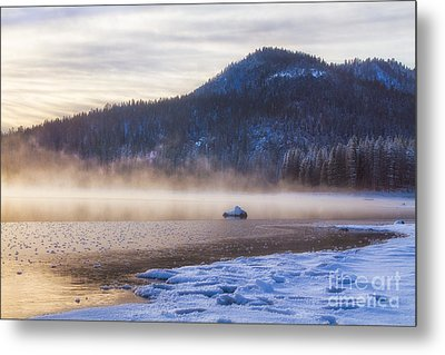 Winter Mist Metal Print