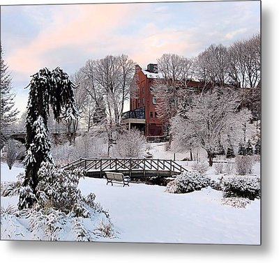 Winter Morning Color Metal Print by Janice Drew