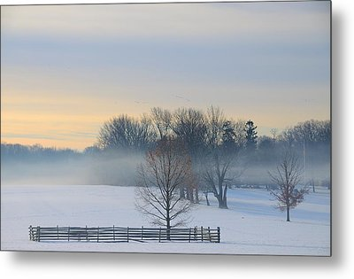 Winter Morning Fog Metal Print by Steven Richman