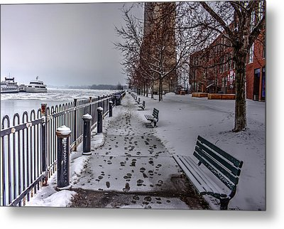 Winter Morning Metal Print by Nicky Jameson