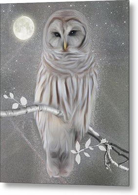Winter Owl Metal Print by Nina Bradica