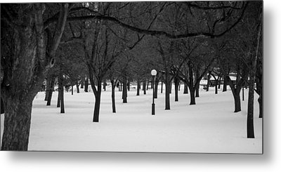 Winter Park Metal Print