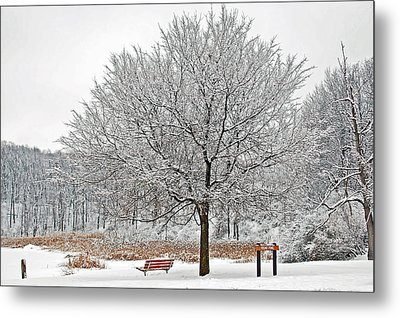 Winter Park Metal Print by Aimee L Maher Photography and Art Visit ALMGallerydotcom