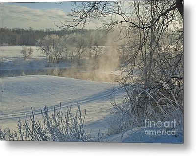 Metal Print featuring the photograph Winter Pastorale II by Jessie Parker