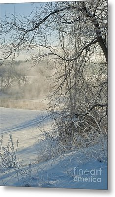 Winter Pastorale IIi Metal Print by Jessie Parker
