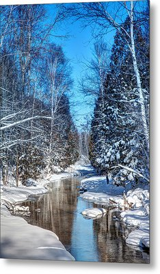Winter Perfection Metal Print by Gary Gish