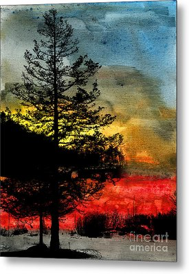 Winter Poise Metal Print by R Kyllo