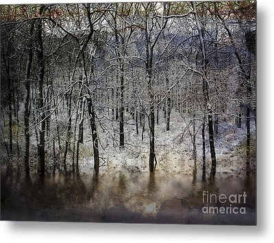 Winter Pond Metal Print
