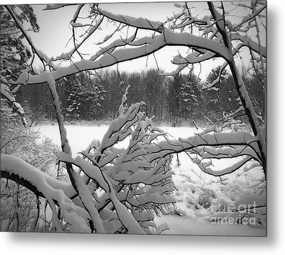 Metal Print featuring the photograph Winter Pond by Kathi Mirto