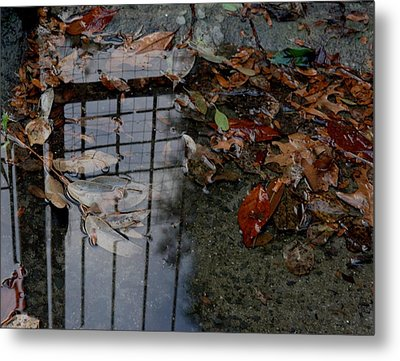 Winter Puddle Metal Print