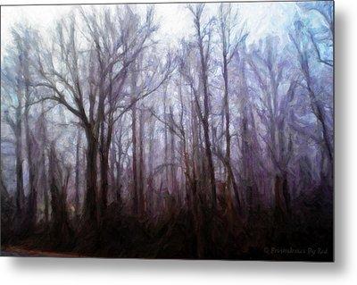 Winter Rain Metal Print by Melody McBride