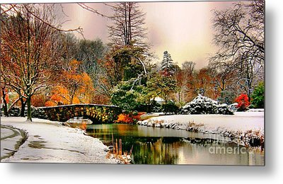 Winter Reflection Metal Print