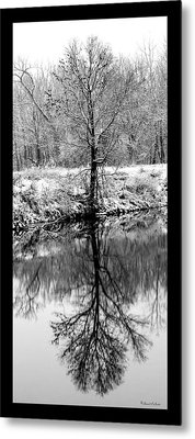 Winter Reflections 3 Metal Print
