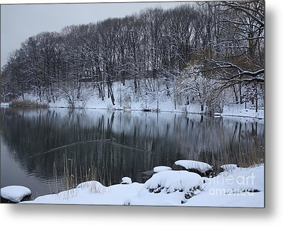 Metal Print featuring the photograph Winter Reflections by Dora Sofia Caputo Photographic Art and Design