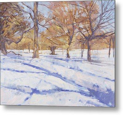 Winter, Richmond Park Metal Print