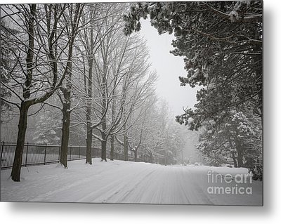 Winter Road Metal Print by Elena Elisseeva