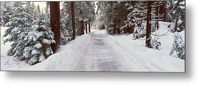 Winter Road Near Lake Tahoe, California Metal Print