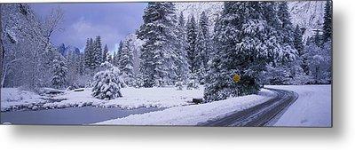 Winter Road, Yosemite Park, California Metal Print by Panoramic Images