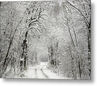 Metal Print featuring the photograph Winter Scene 2 by Gabriella Weninger - David