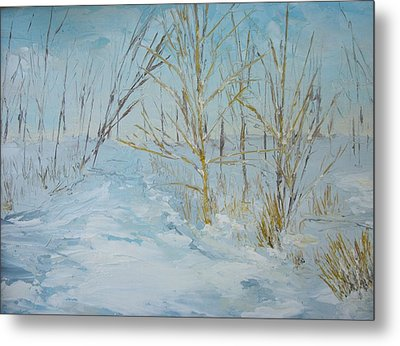 Winter Scene Metal Print by Dwayne Gresham