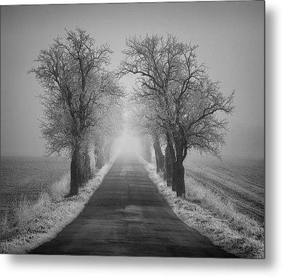 Winter Scene Metal Print by Jaromir Hron