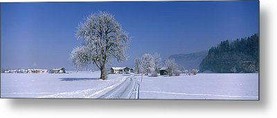Winter Scenic, Austria Metal Print by Panoramic Images