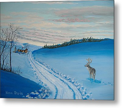 Winter Sentinel Metal Print by Norm Starks