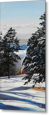 Winter Serenity Metal Print by Suzanne Schaefer