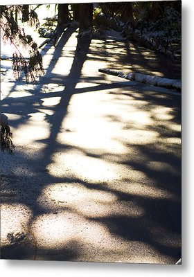 Metal Print featuring the photograph Winter Shadows by Yulia Kazansky